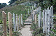 Boot camp stairs - stairs in outdoor fitness boot camp in San Francisco near Ocean Beach and Sutro Heights Park